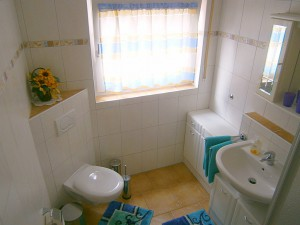 Badezimmer mit Dusche und WC | Ferienwohnung Blick aufs Alte Rathaus am Europa-Park Rust